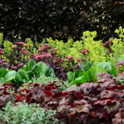 Diverse beplanting